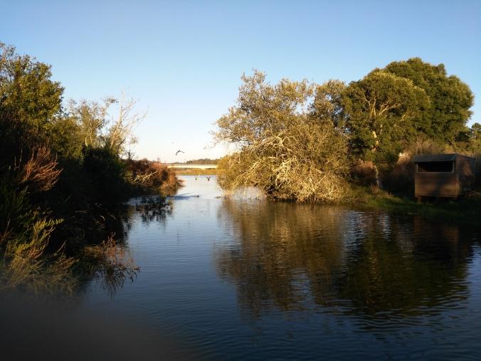 Recorrido por el río. Felicidad